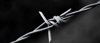 Barbed Wire Background Image